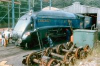 A4 60007 <I>Sir Nigel Gresley</I> receiving attention from a squad of cleaners at Grosmont shed in 1996.<br><br>[Colin Alexander&nbsp;//1996]