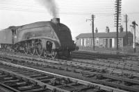 60012 <I>Commonwealth of Australia</I> photographed in the yard at Heaton in mid 1963. [See image 38028]<br><br>[K A Gray&nbsp;//1963]