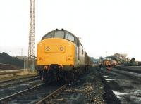 37239 in the sidings at Markham Main Colliery, Armthorpe, on the eastern edge of Doncaster, in the late 1980s. The wagons are FPAs with Russell 30' containers conveying house coal bound for Scotland on one of the two daily Speedlink Coal trunk trains operating from Yorkshire at that time - for final tripping to container railheads at Gartcosh, Aberdeen and Inverness.<br><br>[David Spaven&nbsp;//]