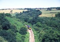 A diesel railcar on the Newquay line seen from Treffry Viaduct in August 1989.<br><br>[Ian Dinmore&nbsp;/08/1989]