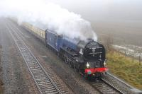 A1 60163 <I>Tornado</I> runs past the site of the former GWR station at Shrivenham on the eastern outskirts of Swindon on 24 November. Not the best of days! A none too gentle rain shower plus a modicum of freezing fog to enjoy whilst passing the time away waiting to catch a glimpse of the locomotive in its new blue livery.<br><br>[Peter Todd&nbsp;24/11/2012]
