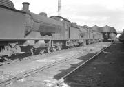 A line of mainly Q6 0-8-0 locomotives in the yard at Thornaby in March 1961. 63370 had arrived at its new home in June 1958 from Newport (Teesside), one of the four old steam sheds in the area replaced by the new 51L.  <br><br>[K A Gray&nbsp;26/03/1961]