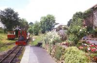A colourful scene on the Launceston Steam Railway in the summer of 2004.<br><br>[Ian Dinmore&nbsp;//2004]