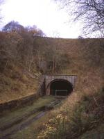 Looking north to the southern portal of Bowshank Tunnel on 15th November 2012. The portal seen here is a later addition to the original structure completed for the opening of the Edinburgh-Hawick line in 1849.<br><br>[David Spaven&nbsp;15/11/2012]