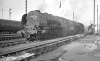 Locomotives on Polmadie shed in April 1961. Centre stage is Stanier Pacific 46241 <I>City of Edinburgh</I>.<br><br>[K A Gray&nbsp;03/04/1961]