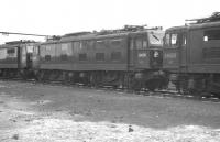 26038 and 26025 stand amongst a number of EMI (later Class 76) 1.5kV DC electric locomotives stabled in the sidings at Wath in the early 1960s. [See image 20995]<br><br>[K A Gray&nbsp;//1962]