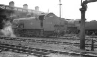 Scene in the shed yard at Exmouth Junction in August 1960. Maunselll 'Z' class 0-8-0T no 30954 is nearest the camera, with S15 4-6-0 no 30843 in the background.<br><br>[K A Gray&nbsp;10/08/1960]