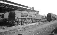 A section of the shed yard at Nine Elms, photographed in the late 1960s, with rebuilt Bulleid West Country Pacific no 34008 <I>'Padstow'</I> nearest the camera.<br><br>[K A Gray&nbsp;//1967]