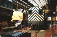 A busy scene during a Doncaster Works 'Open Day' on 12 July 1992. 37887 is under repair in company with 08879 and one carriage from Class 142 DMU 142055. A class 31, and what appears to be an unidentified Network South East liveried class 50, can be seen beyond the shunter. <br><br>[David Pesterfield&nbsp;12/07/1992]