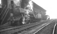 A3 Pacific no 60110 <I>Robert the Devil</I> alongside the coaling stage at Heaton shed in the 1960s.<br><br>[K A Gray&nbsp;//]