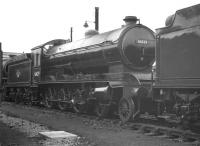 Immaculate looking B16 4-6-0 no 61429 standing in the sidings at Darlington shed in May 1960. <br><br>[K A Gray&nbsp;07/05/1960]