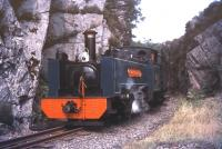 Scene on the Vale of Rheidol Railway in 1974 near Devils Bridge.<br><br>[Ian Dinmore&nbsp;//1974]