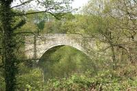 The historic Causey Arch in May 2006, seen from alongside the trackbed of the Tanfield Railway. [See image 41776]<br><br>[John Furnevel 09/05/2006]