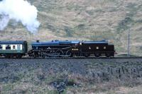 Black 5 No. 5305 accelerates 'The West Highlander' up the grade away from Glenfinnan viaduct on the return from Mallaig to Fort William in May 1987. (The name was changed to 'The Lochaber' in 1990 before settling on 'The Jacobite' at privatisation.) [With thanks to David Pesterfield]<br><br>[Bill Jamieson&nbsp;21/05/1987]
