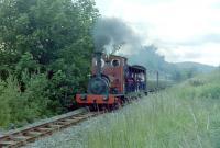 'Holy War' with a train between Bala and Llanuwchllyn on the Bala Lake Railway in July 1981.<br><br>[Colin Miller&nbsp;/07/1981]