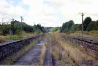 Desolation at Torrington in 1989. [See image 12884]<br><br>[Ian Dinmore&nbsp;//1989]