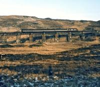 An unidentified class 37 in Transrail Freight livery takes the Euston to Fort William sleeper over the viaduct just north of Rannoch station on a crystal clear but bitingly cold February morning in 1996. The photographer had just alighted from the train and was grateful for the freezing conditions which made progress easy over the normally boggy terrain hereabouts.<br><br>[Bill Jamieson&nbsp;01/02/1996]