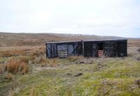 In active service, as sheep shelters, some 60 years or so after withdrawal. At 1650ft, by the road from St Johns Chapel in Weardale to Langdon Beck in Teesdale, northern Pennines, March 2013.<br><br>[Brian Taylor&nbsp;03/03/2013]