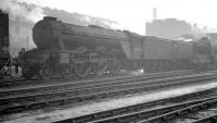 Gresley A3 no 60098 <I>Spion Kop</I> stands in the yard at a hazy Heaton shed. The date of the photograph is not recorded, but the Pacific was withdrawn from St Margarets in October 1963. <br><br>[K A Gray&nbsp;//]