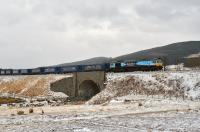 On a bitterly cold March afternoon WHM liveried 66434 runs south through light snow near Tomatin with the returning Tesco empties.<br>  <br><br>[John Gray&nbsp;23/03/2013]