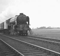 Tweedmouth shed's A1 Pacific no 60116 <I>Hal O' The Wynd</I> approaching Cramlington, Northumberland, in October 1962 with the 7.28am Berwick - Newcastle Central stopping train. <br><br>[K A Gray&nbsp;20/10/1962]