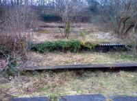 There can't be many places in the UK where four platforms have survived closure by nearly 50 years, in a location a mere hundred yards from a busy commercial street. View looks North towards Ashbourne in February 2013.<br><br>[Ken Strachan&nbsp;21/02/2013]