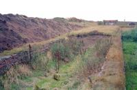 Remains at Ryeland on the Darvel - Strathaven line looking west in 1996, with mysterious recovery of infill material from the former island platform. Ryeland closed to passengers in 1939 along with the line west to Darvel.<br><br>[Ewan Crawford&nbsp;//1996]