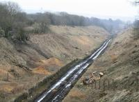 View south over the abandoned platforms of Tynehead station towards a misty Falahill on 12 April 2013. A considerable amount of vegetation has been cleared since my first visit here. [See image 14427] <br><br>[John Furnevel&nbsp;12/04/2013]