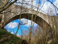 The historic Causey Arch on the Tanfield Railway in March 2013. Dating from 1725, it is the world's oldest surviving single arch railway bridge. [See image 41776]<br><br>[Colin Alexander 30/03/2013]