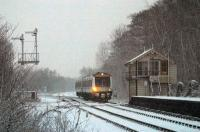 A bleak winter morning at Brundall, Norfolk, in 2003. A Norwich bound DMU arrives at the station.<br><br>[Ian Dinmore&nbsp;//2003]