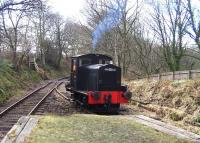 Armstrong Whitworth D2 of 1933 at Causey Arch on the Tanfield Railway  on 30 March 2013.<br><br>[Colin Alexander 30/03/2013]