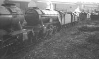 The sidings at Heaton shed in the 1960s. Locomotives include Gresley V2 no 60835, <I>The Green Howard</I>. The locomotive was withdrawn from St Margarets in October 1965 and cut up at Campbells of Airdrie two months later.<br><br>[K A Gray&nbsp;//]