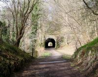 The eastern approach to Old Woodhouselee Tunnel, Auchendinny, on 20 April 2013, with Firth Viaduct behind the camera [see image 2659]. The site of Dalmore Mill is at the far end of the tunnel.<br><br>[John Furnevel 20/04/2013]
