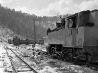 Snow lying at Oskova sidings in the late morning of Saturday 16 March as Czech built 0-6-0T No. 25-30 waits to pick up a load of coal for the washery. In the background diesel-hydraulic No. 740 108 has recently arrived from the mine with yet another trainload. <br><br>[Bill Jamieson&nbsp;16/03/2013]