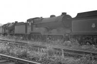 62693 <I>Roderick Dhu</I> 'stored' alongside Polmont shed in July 1959. The locomotive was later moved to the disposal sidings at Boness, wher e it was photographed in February 1962 [see image 37290]. 62693 was eventually cut up at Connels yard, Coatbridge, in March 1963.<br><br>[K A Gray&nbsp;27/07/1959]