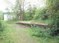 Remains of the 1883 station at Rushey Platt, Swindon, in May 2013. The 4-platform station stood at the south end of the spur linking the GWR with the MSWJ. Closed to passengers in 1905 the station continued to handle goods traffic (mainly milk) well into the 1960s, with the line closing completely in 1975. Much of the site is now covered by an industrial estate.<br><br>[Peter Todd&nbsp;21/05/2013]