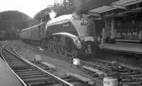 Haymarket corridor-tender A4 no 60031 <I>Golden Plover</I> carrying the headboard of <I>The Elizabethan</I> appears to have come to (almost?) a halt at Newcastle Central on 1 July 1961. <br><br>[K A Gray&nbsp;01/07/1961]
