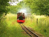 Scene on the 15' gauge Bure Valley Railway near Buxton, Norfolk, in June 2005.<br><br>[Ian Dinmore&nbsp;/06/2005]