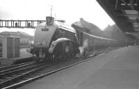 Platform view at the east end of Newcastle Central in the 1960s. A4 Pacific 60028 <I>Walter K Whigham</I> is at the head of an ECML train.<br><br>[K A Gray&nbsp;//]