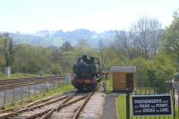Ex GWR Pannier tank 1369 in the process of running round the train back to Buckfastleigh at Totnes in April 2011.<br><br>[Ian Dinmore&nbsp;21/04/2011]