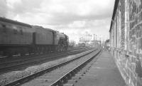 Ferryhill's A2 Pacific no 60531 <I>Bahram</I> photographed from alongside Stirling South shed in April 1961 taking a Glasgow - Aberdeen train towards the station.<br><br>[K A Gray&nbsp;03/04/1961]
