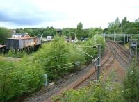 View west over Sunnyside Junction, Coatbridge, on 10 August 2013. Sunnyside station is behind the camera and the freight only line from Whifflet South comes in from the left. Part of Summerlee Industrial Heritage Centre stands in the background. [See image 22309]<br><br>[Veronica Clibbery&nbsp;10/08/2013]