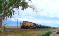 A Union Pacific freight passing Cisco, Utah, in the summer of 2013. [See image 44380]<br><br>[Colin Alexander&nbsp;29/07/2013]