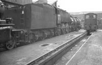 Bulleid Q1 0-6-0 no 33038 on Brighton shed in August 1961.<br><br>[K A Gray&nbsp;14/08/1961]