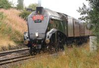 The <I>Cumbrian Mountain Express</I> on 7 September 2013 was hauled by A4 no 60009, <I>Union of South Africa</I>. The tour is seen on the outward leg from Crewe to Carlisle via Stockport, Manchester Victoria, Bolton, Leyland, Blackburn and the S&C approaching Chorley.<br><br>[John McIntyre&nbsp;07/09/2013]
