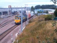 Freightliner 66540 brings a container train south through Nuneaton platform 7 on 13th September 2013. The site to the right is now being developed as a fast food outlet [see image 42229]; shame they didn't develop it as a rear entrance to the station.<br><br>[Ken Strachan&nbsp;13/09/2013]