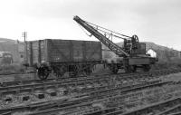 Ex-CR rail mounted hand crane and ex-Aberdeen Gas Works coal wagon at Aviemore in June 1974 on what was to become the site of the Strathspey Railway's Speyside station. <br><br>[John McIntyre&nbsp;15/06/1974]