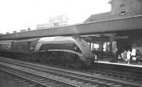 Gresley A4 Pacific no 60008 <I>Dwight D Eisenhower</I> arrives at Doncaster on 1 September 1962 with the 3.43pm service to Kings Cross ex-Leeds Central.<br><br>[K A Gray&nbsp;01/09/1962]