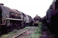 Locomotive lineup in the scrapyard of Woodham Bros, Barry, in May 1974. On the left is Bulleid Merchant Navy Pacific no 35006 <I>Peninsular & Oriental S N Co</I>, built at Eastleigh in 1941 and withdrawn from Salisbury in 1964. The locomotive was resued and subsequently moved to the Gloucestershire Warwickshire Railway at Toddington in 1983 where restoration is being undertaken by the 35006 Locomotive Co Ltd.<br><br>[John Thorn&nbsp;/05/1974]