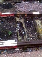 A new design of lightweight wooden sleeper is being trialled at Stafford. To be fair to Network Rail, it is on a stub line, with about six feet of rail from a buffer stop on the left to a dead end on the right.<br><br>[Ken Strachan&nbsp;02/10/2013]